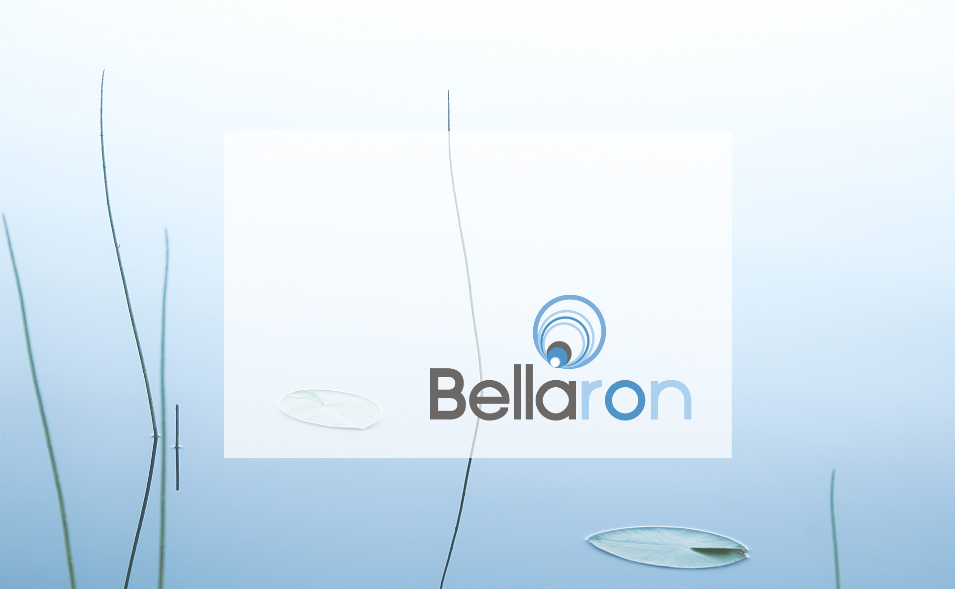 media/image/Startseite_Moodbild_Bellaron_1920x1185px.jpg